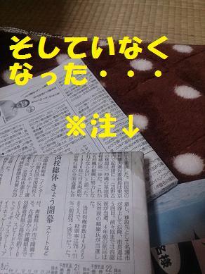 20140120senna4.jpg